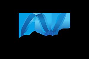 ASP.NET Web/Win forms/Core